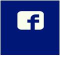 facebook autohandler online