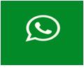 whatsApp autohandler online